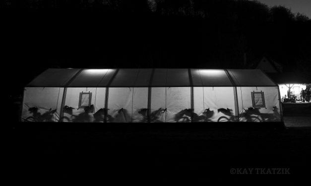 #cbg17 – Teil 2: Dem Schweinehund einen Maulkorb verpassen